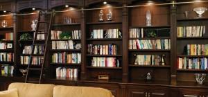 beautiful library shelves